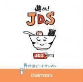進め!JDS  砂浜ビーチサンダル